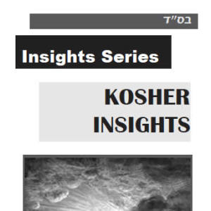 Kosher Insights PDF
